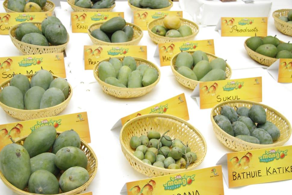 International Mango Festival in India - Best Time
