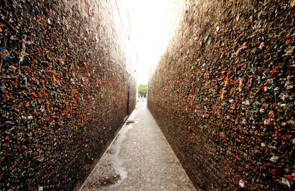Bubblegum Alley in California - Best Season
