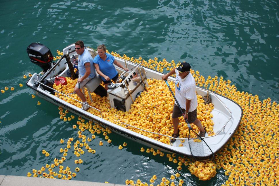 Yellow plastic ducks in Chicago River