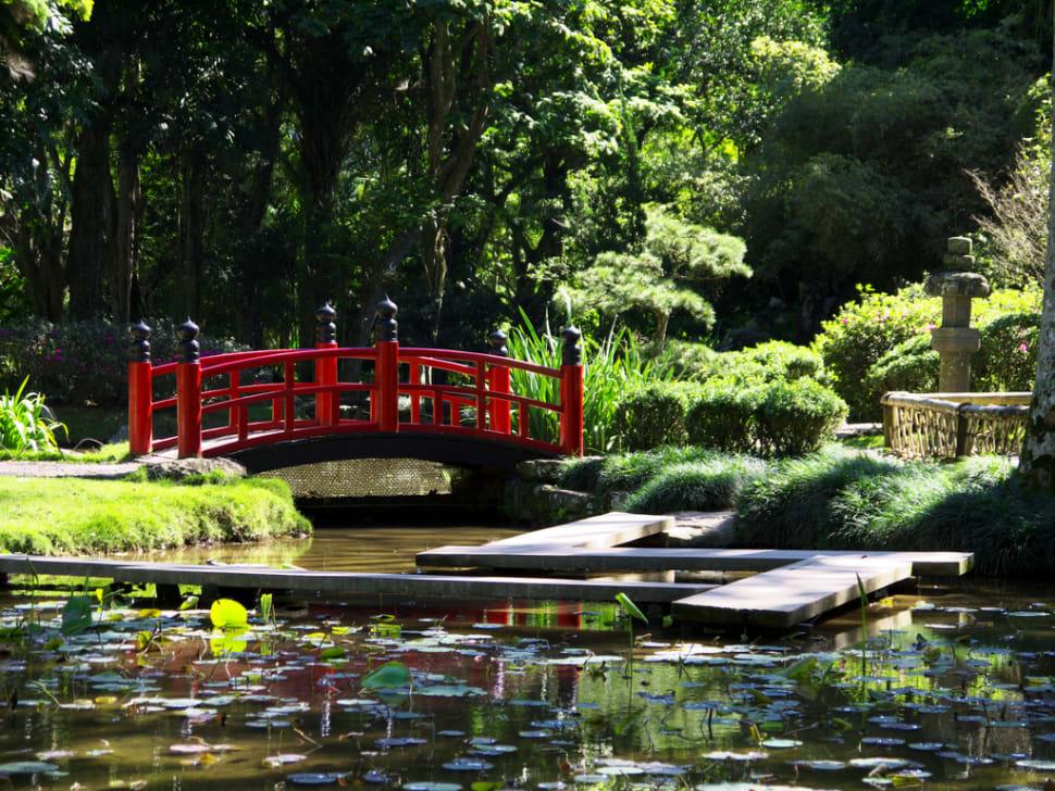 Best time to see Botanical Garden or Jardim Botânico in Rio de Janeiro