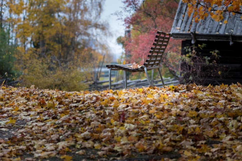 Best time for Autumn in Sweden