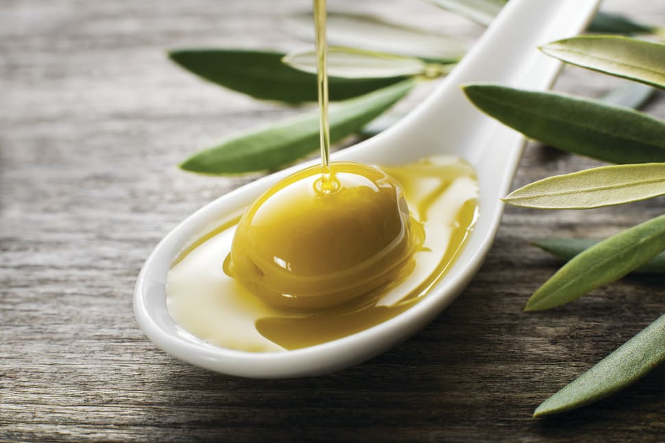 Olive Harvest in Slovenia - Best Season