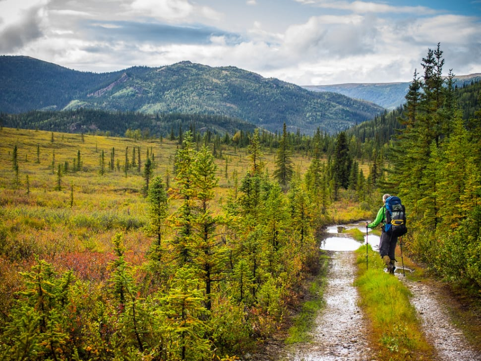 Hiking the Stampede Trail