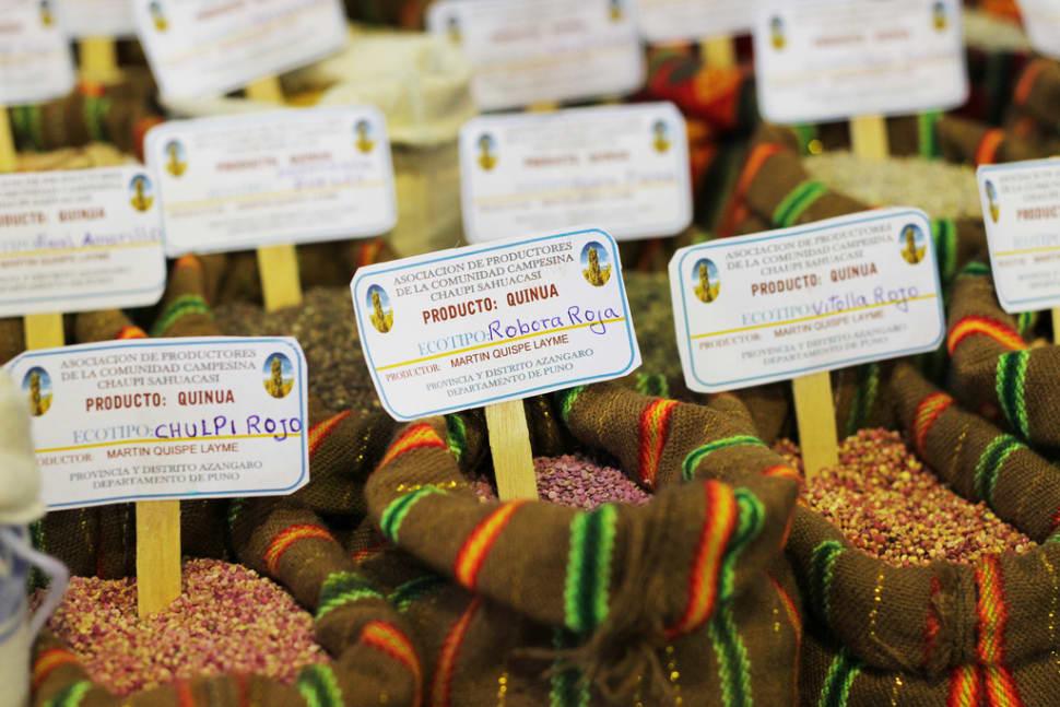 Mistura Gastronomic Fair in Peru - Best Season