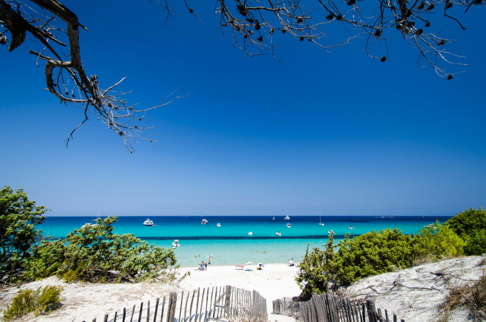 Best time to see Sun and Fun: Beach Season in Corsica