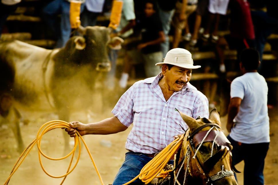 Best time to see Fiestas Típicas Nacionales Santa Cruz in Costa Rica