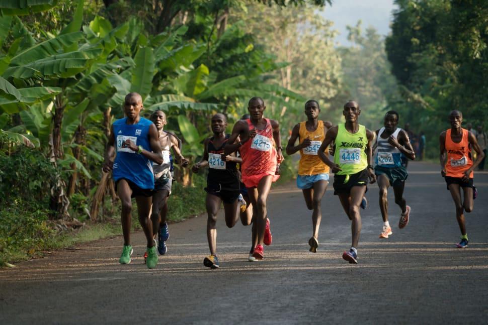 Things to do in Tanzania : Kilimanjaro Marathon