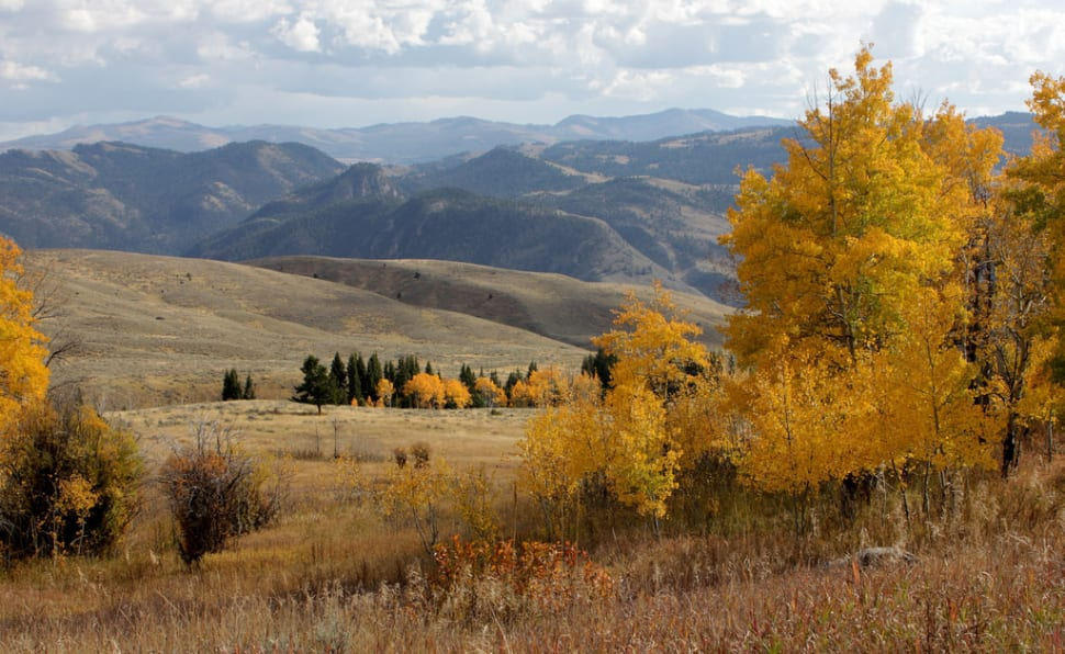 Autumn in Yellowstone National Park - Best Time