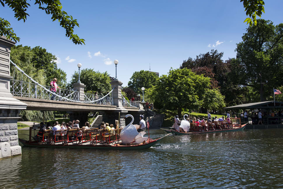 Swan Boats in Boston - Best Time