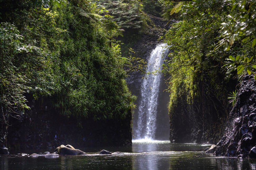 Best time for Taveuni Island in Fiji