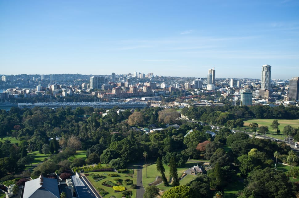 Looking out over the Royal Botanic Gardens