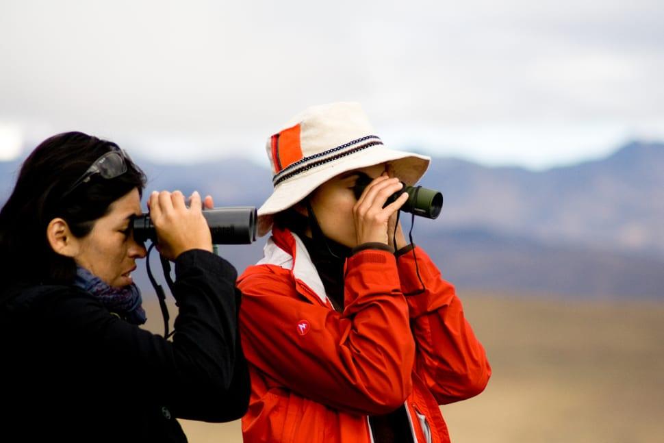 Birdwatching in Peru - Best Time