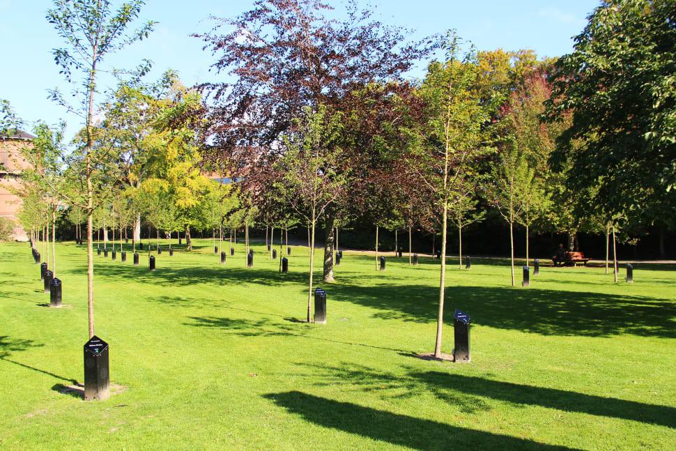 Singing Trees (Park of Music) in Denmark - Best Season