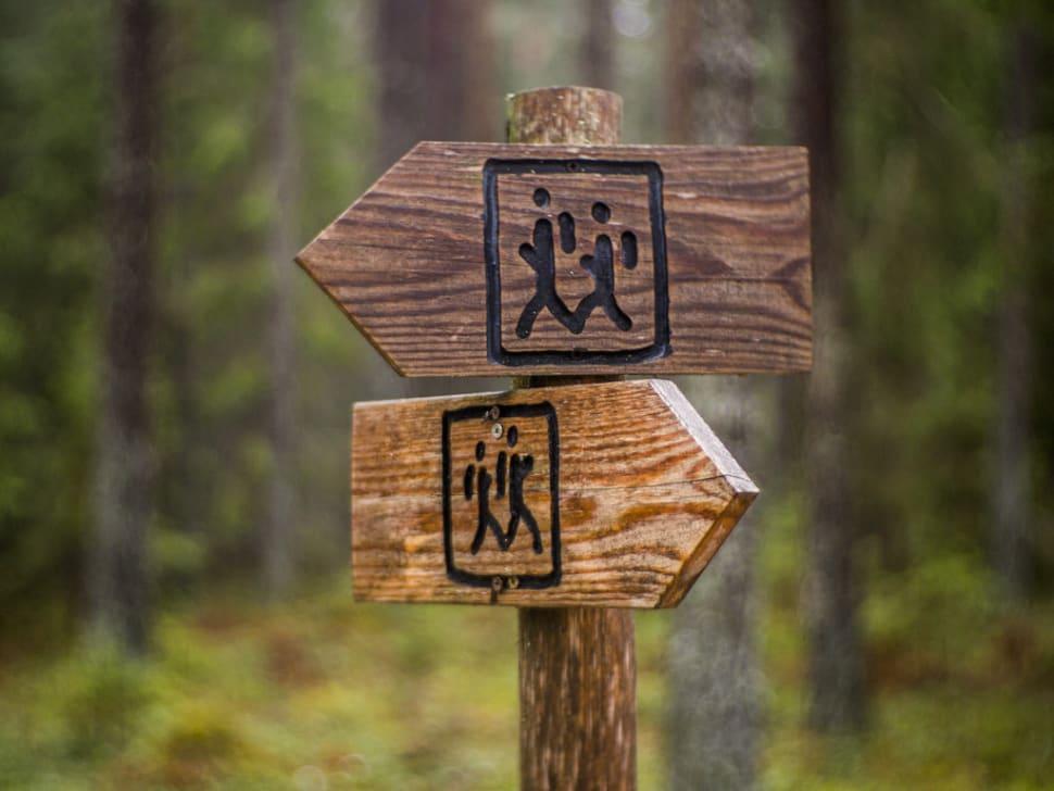 Hiking in Estonia - Best Season