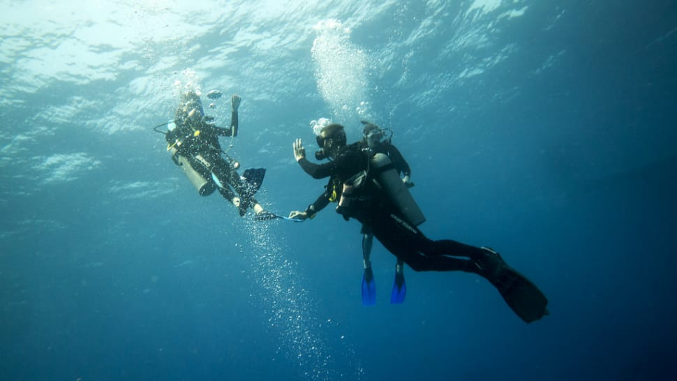 Diving in Mexico - Best Time
