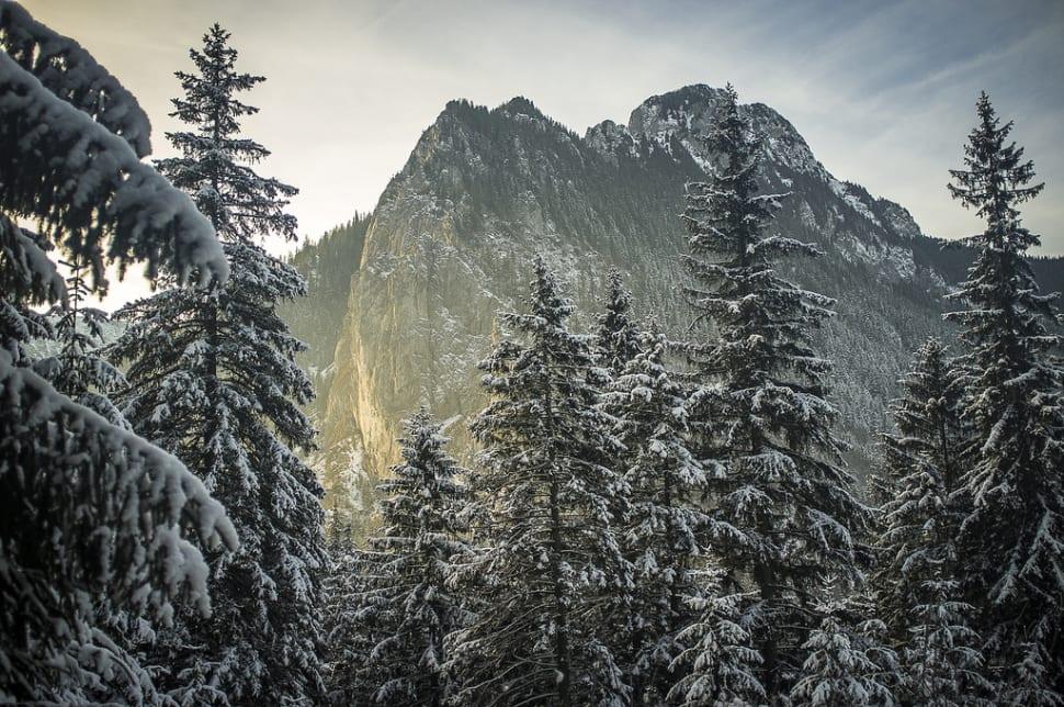 Stunning views of the Tatra Mountains
