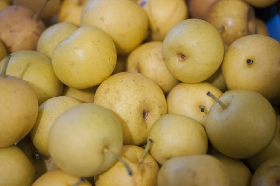 Nashi Pears in Japan - Best Time