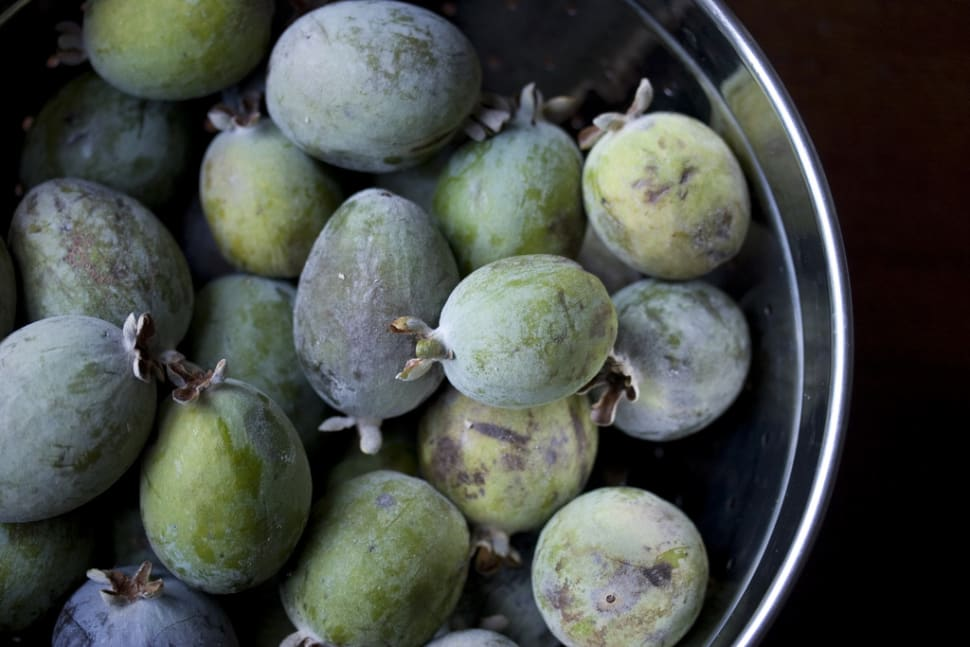 Guava or Goiaba in Rio de Janeiro - Best Time
