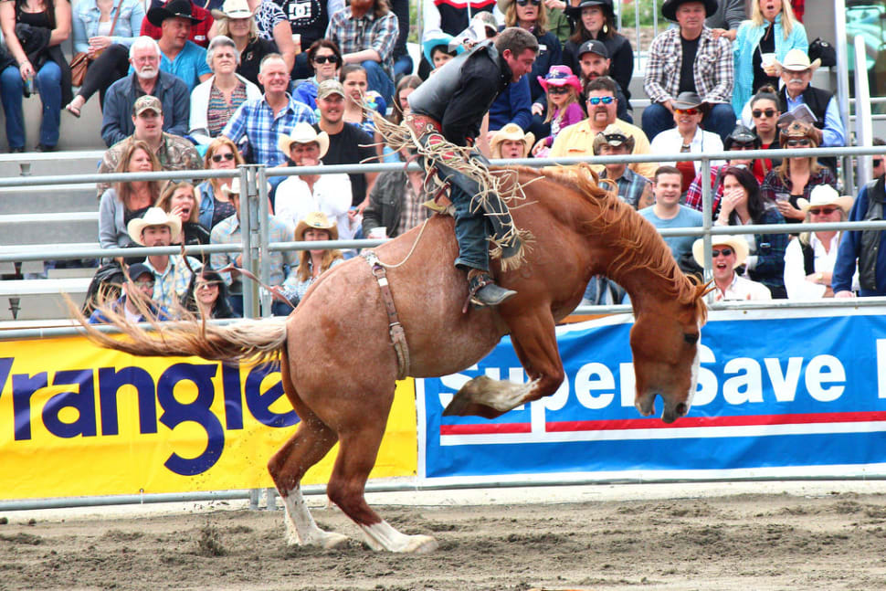Cloverdale Rodeo and Country Fair in Vancouver - Best Season