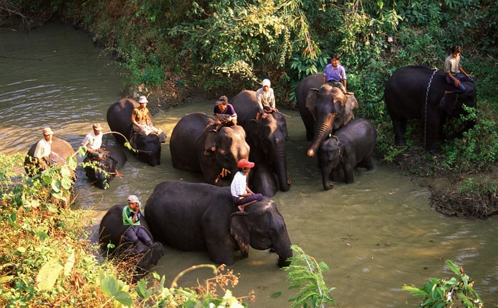 Best time for Alaungdaw Kathapa National Park in Myanmar