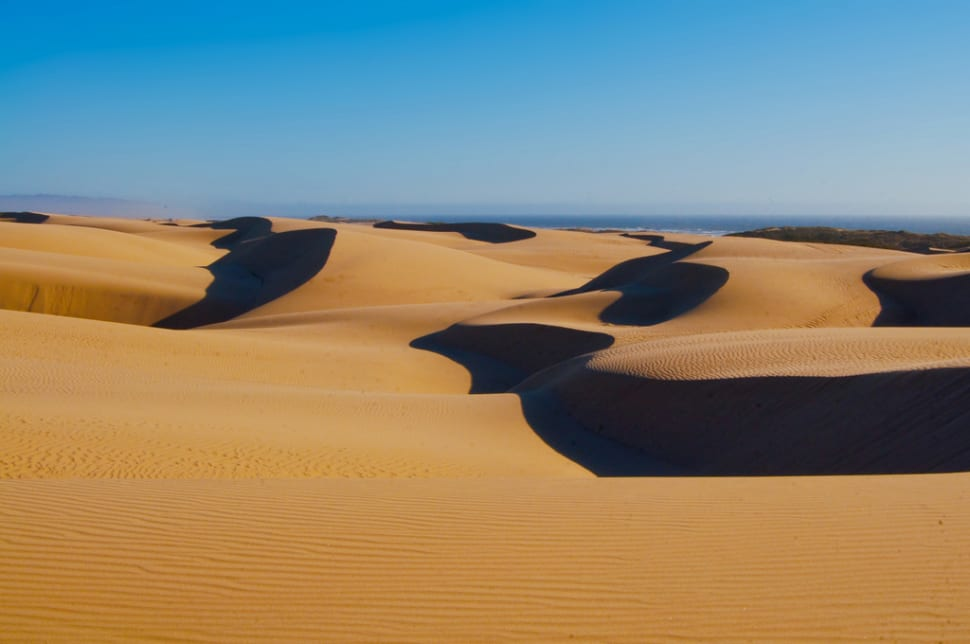 Guadalupe-Nipomo Dunes in California - Best Season
