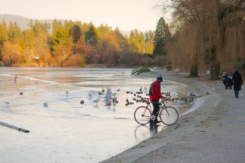 Shoulder Season in Vancouver - Best Season