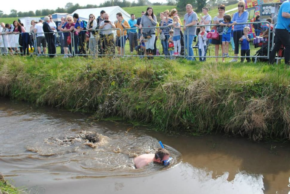 Irish Bog Snorkelling Championship in Ireland - Best Season