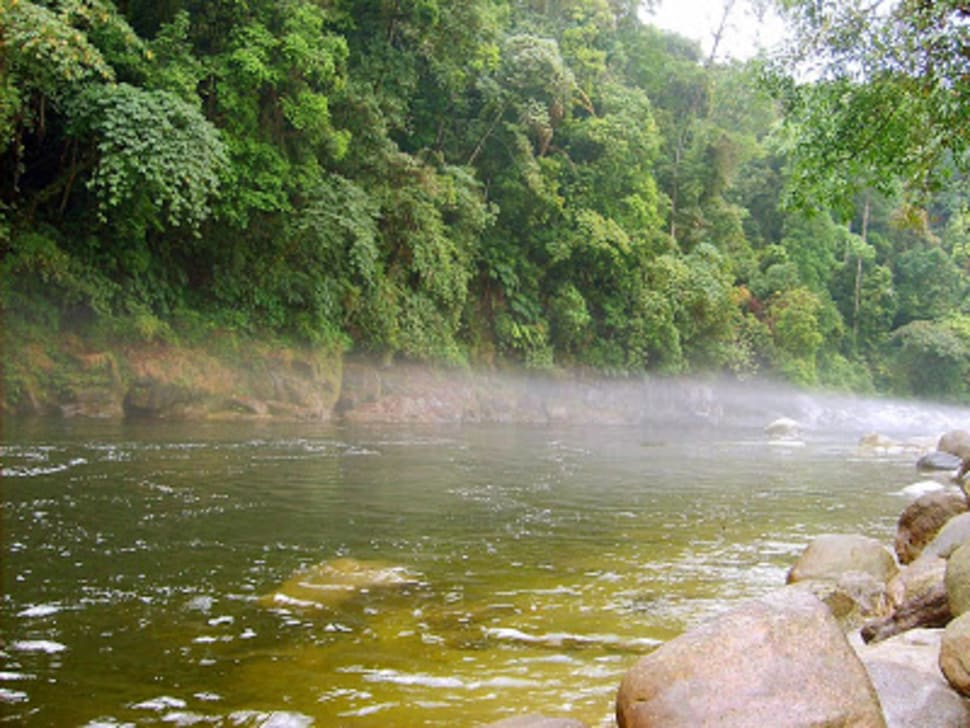 Alaungdaw Kathapa National Park in Myanmar - Best Season