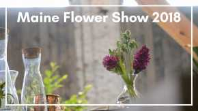 Maine Flower Show in Portland