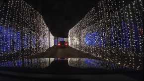 Suwannee Lights