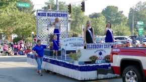 Marshall County Blueberry Festival
