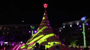 Christmas and New Year's Eve in West Palm Beach