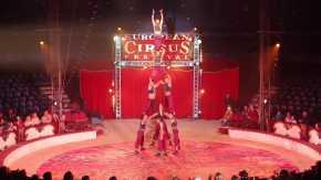 European Circus Festival