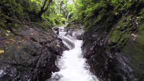 Waitavala Natural Rock Waterslide