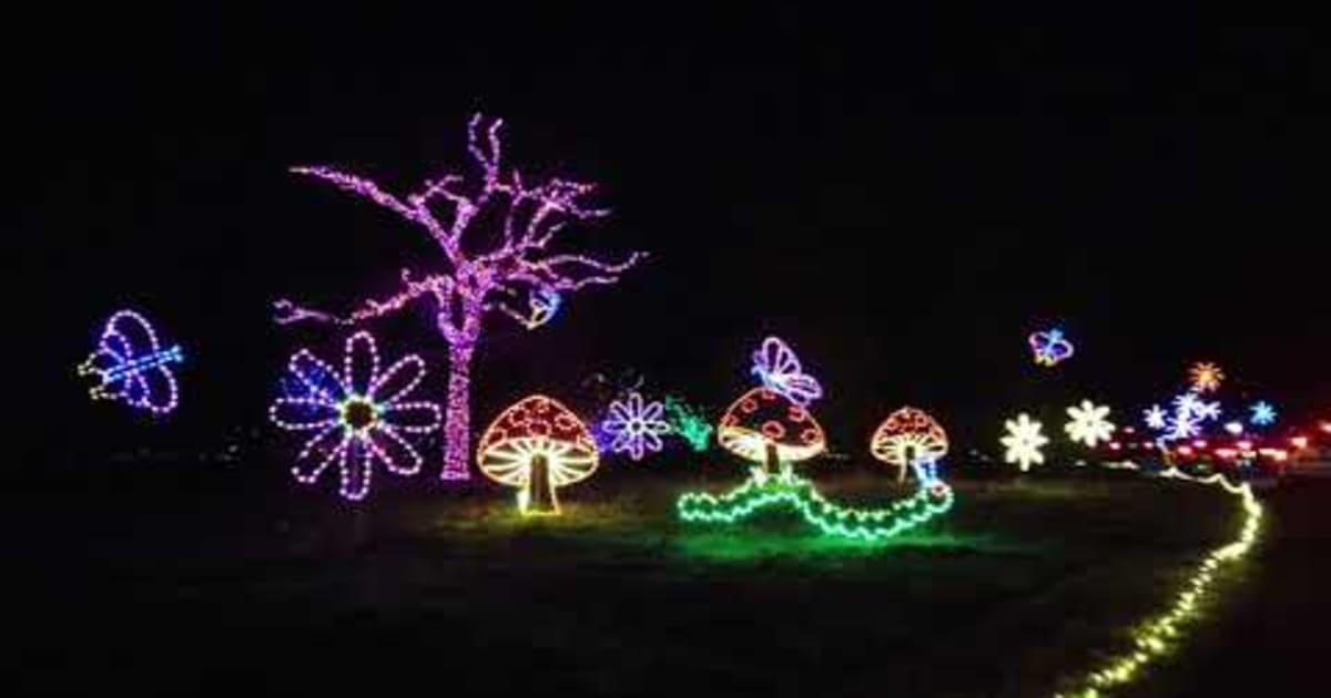 Christmas Lights At Norfolk Botanical Garden 2020 2021 In Norfolk Va Dates