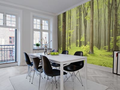 Mural de pared R10101 Deciduous Forest imagen 1 por Rebel Walls
