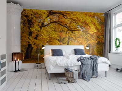 Mural de pared R10191 Yellow Leafy Trees imagen 1 por Rebel Walls