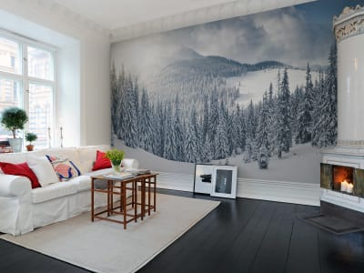 Mural de pared R11571 Winter imagen 1 por Rebel Walls