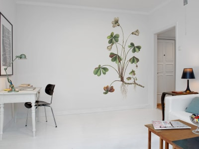 Tapet R11961 Oxalis bilde 1 av Rebel Walls