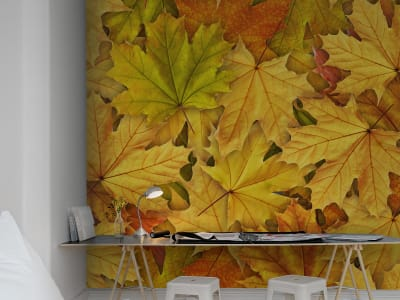 Mural de pared R11931 Autumn Leaves imagen 1 por Rebel Walls
