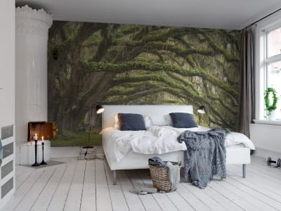 Mural de pared R12481 Fairy Forest imagen 1 por Rebel Walls