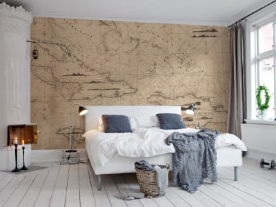 Mural de pared R13791 Navigation Lines imagen 1 por Rebel Walls