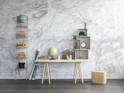 Wall Mural R14071 Elevation Lines, White image 1 by Rebel Walls