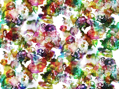 Tapete R13121 Lily Pond, Rainbow Bild 1 von Rebel Walls
