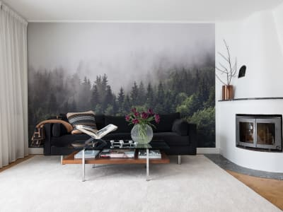 Mural de pared R16731 Misty Fir Forest imagen 1 por Rebel Walls