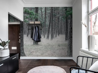 ミューラル壁紙 R13711 Pine Forest 画像 1 by Rebel Walls