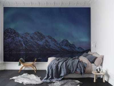 Mural de pared R16491 Northern Lights imagen 1 por Rebel Walls