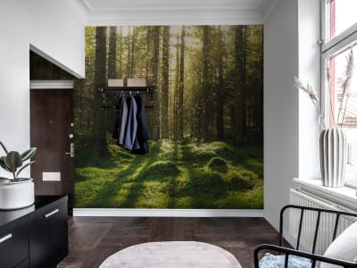 Mural de pared R16641 Forest Bath imagen 1 por Rebel Walls