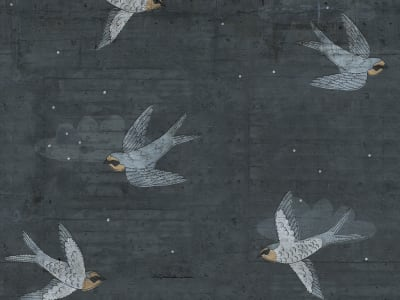 Décor Mural R16972 Concrete Art, Night Swallow image 1 par Rebel Walls