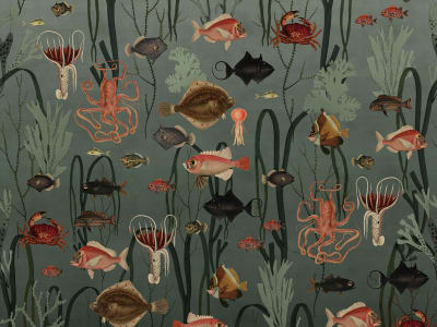 Wall Mural R17141 Aquatic Life, Oxygen image 1 by Rebel Walls